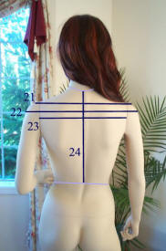 measurements4.jpg (35955 bytes)