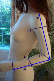 measurements6.jpg (37071 bytes)