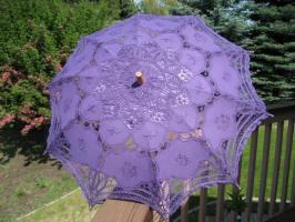 parasolpurple1a.JPG (76153 bytes)