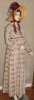 regency gown 001.jpg (420088 bytes)